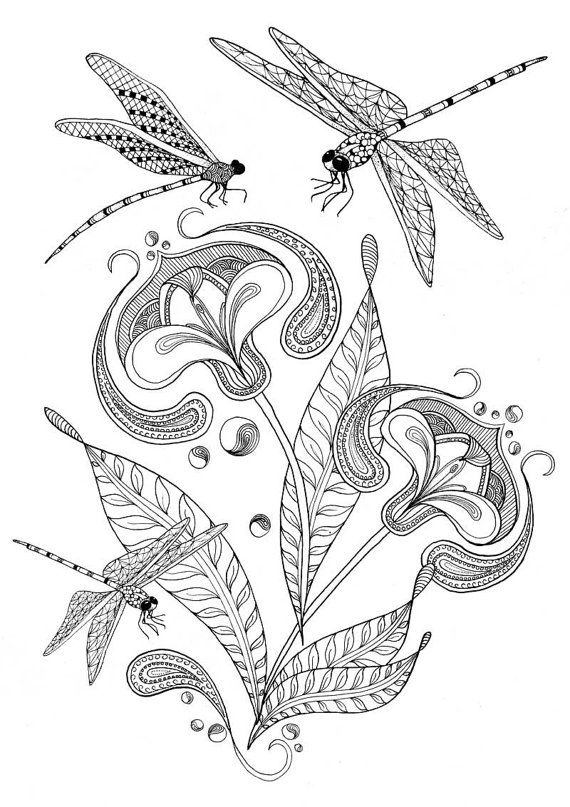 Adult colouring pages of dragonfly and flower illustration