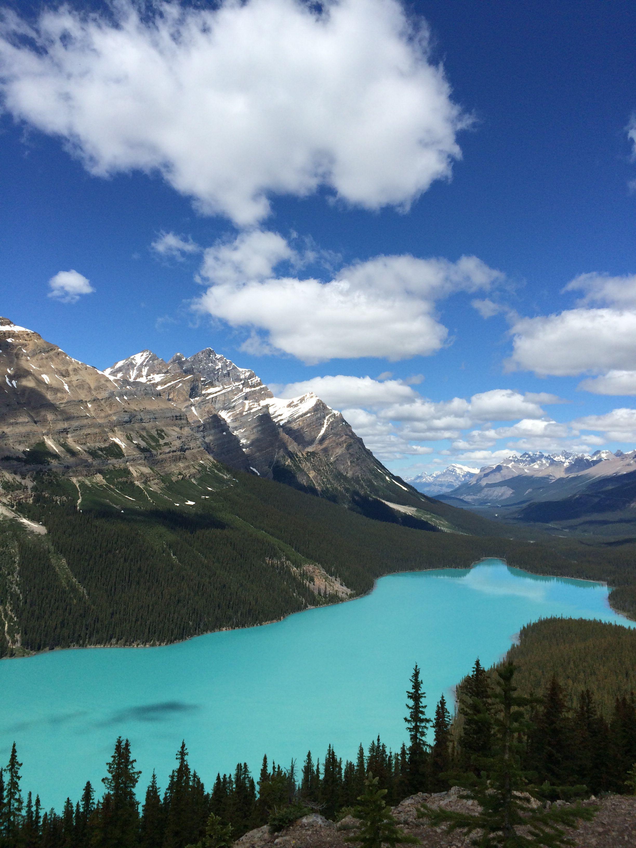 Peyto Lake, Alberta, Canada Favorite places, Natural