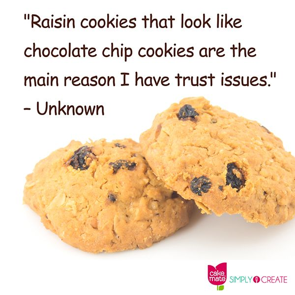 Raisin Cookies That Look Like Chocolate Chip Cookies Are The Main Reason I Have Trust Issues Unknown Chocolate Chip Cookies Raisin Cookies Like Chocolate
