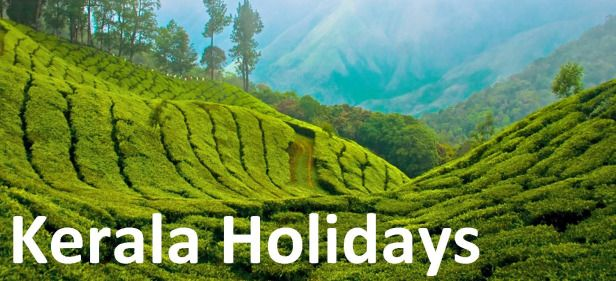 Kerala Tourism exploit Tech Enabled services for Promotion: