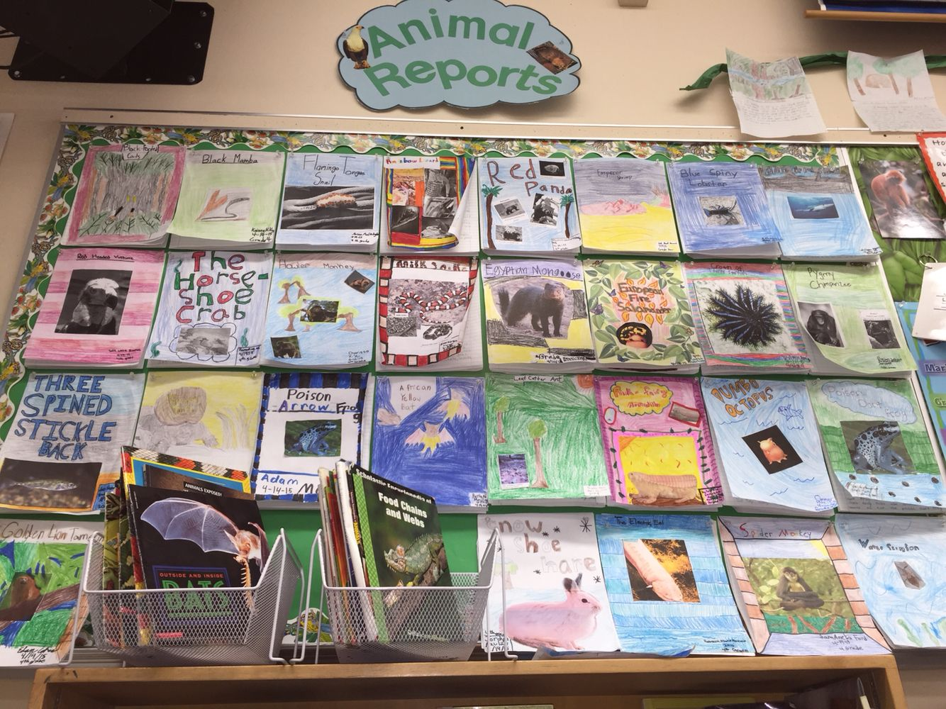 Animal Research Reports Written As Part Of Informative