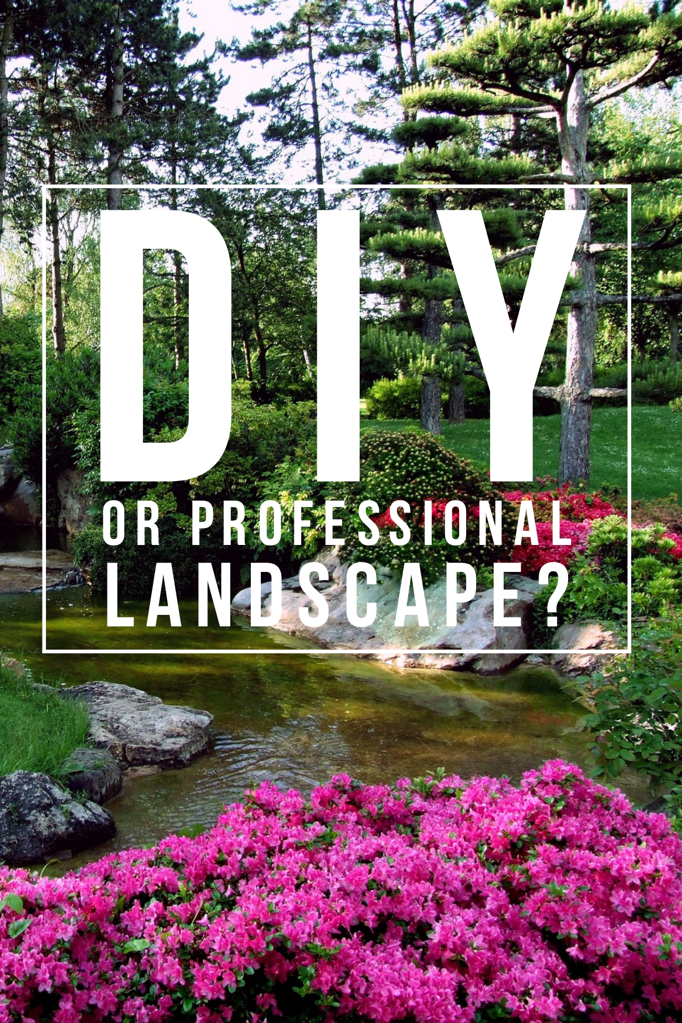 Professional Horticultural Landscape vs DIY - Which One is ...