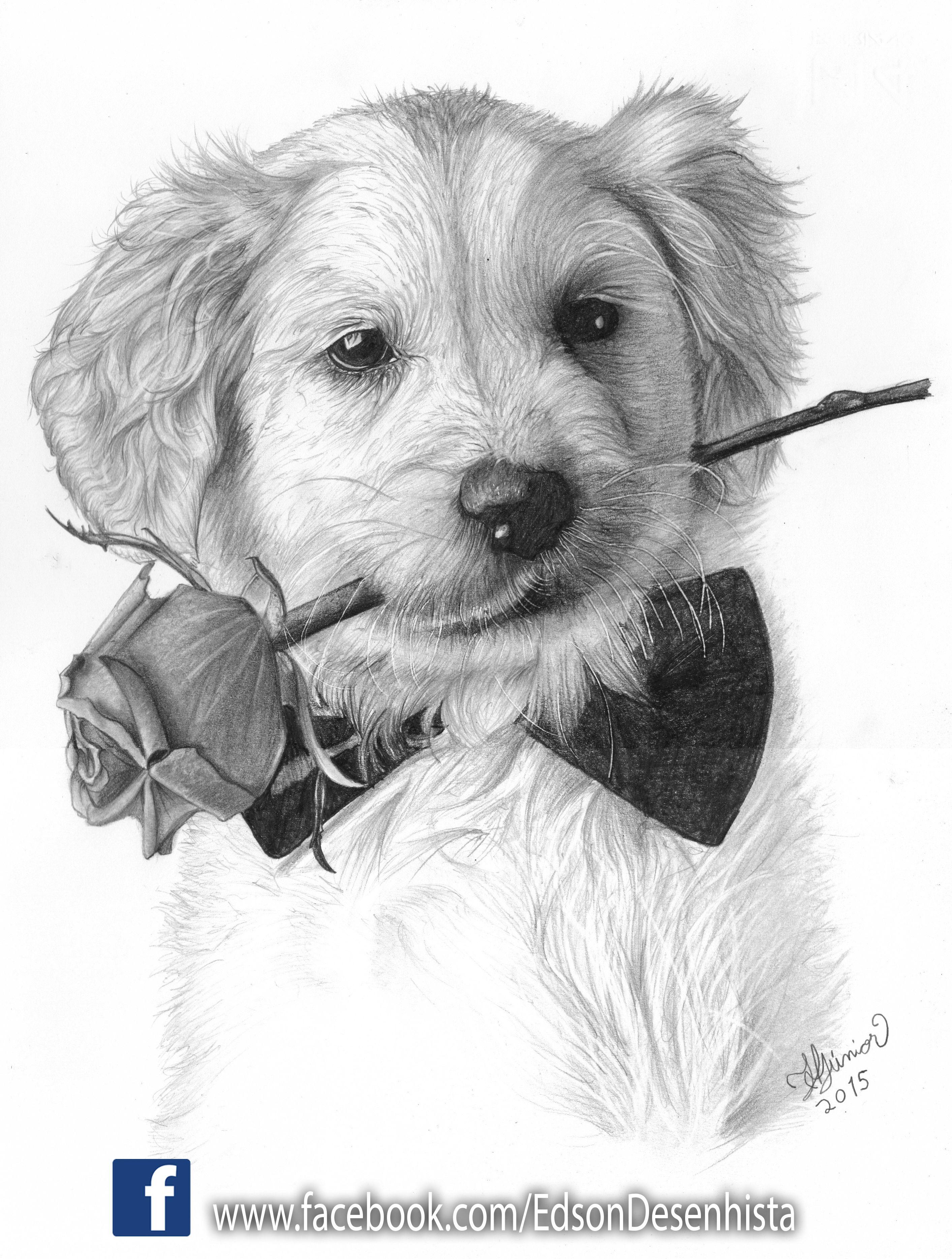Pin Em Desenhos Artisticos