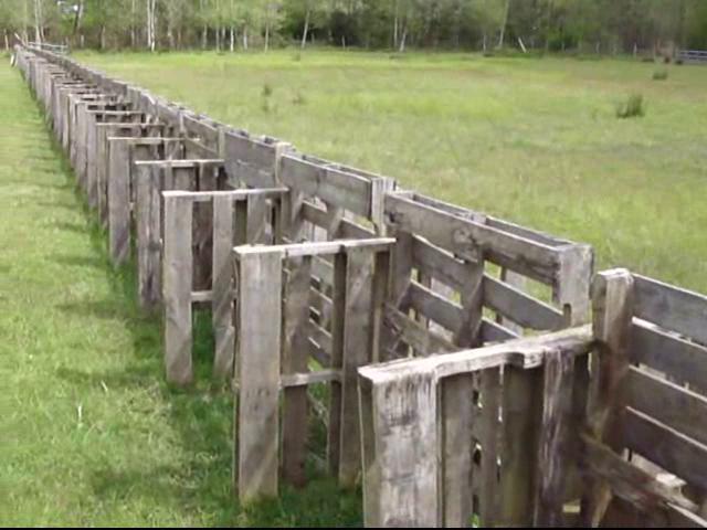 Amazing Diy Pallet Fence Ideas Pallet Fence Pallet