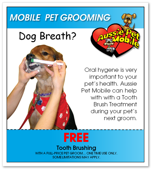 Dog grooming coupons pet salons deals and promo codes get latest p dog grooming coupons pet salons deals and promo codes get latest pet mobile grooming fandeluxe Image collections