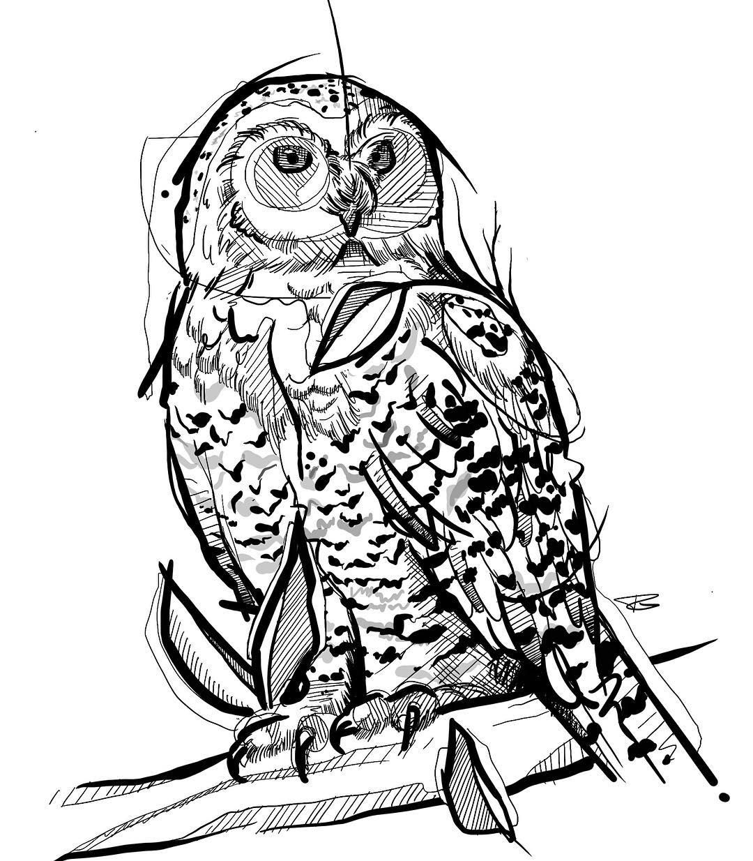 Pierre Gwod Tattoo Artist On Instagram Drew Up This Sketchy Snowyowl For Today Gonna Be A Fun One Tattoo Tattoos De Tattoo Artists Owl Tattoo Artist