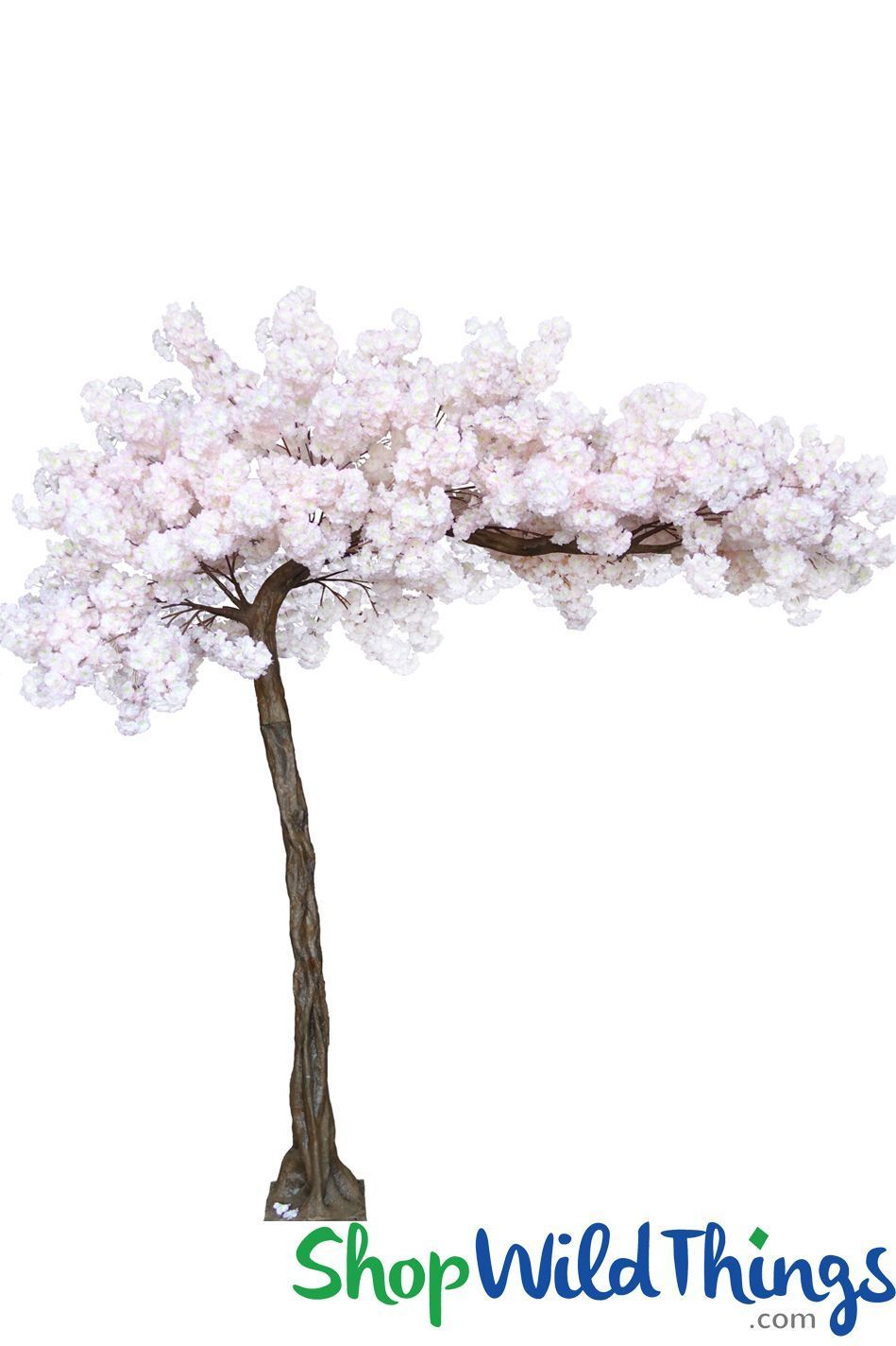 Coming Soon Flowering Cherry Blossom Soft Pink 10 5 Feet Tall X 8 Feet Wide Sideswept Create Arch Using 2 Pink Dogwood Flowering Trees Blossom