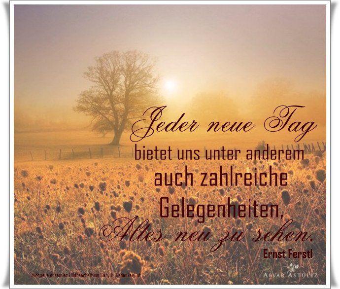 dreamies.de (bd7vpg1r68f.jpg) | Schöne sprüche zitate