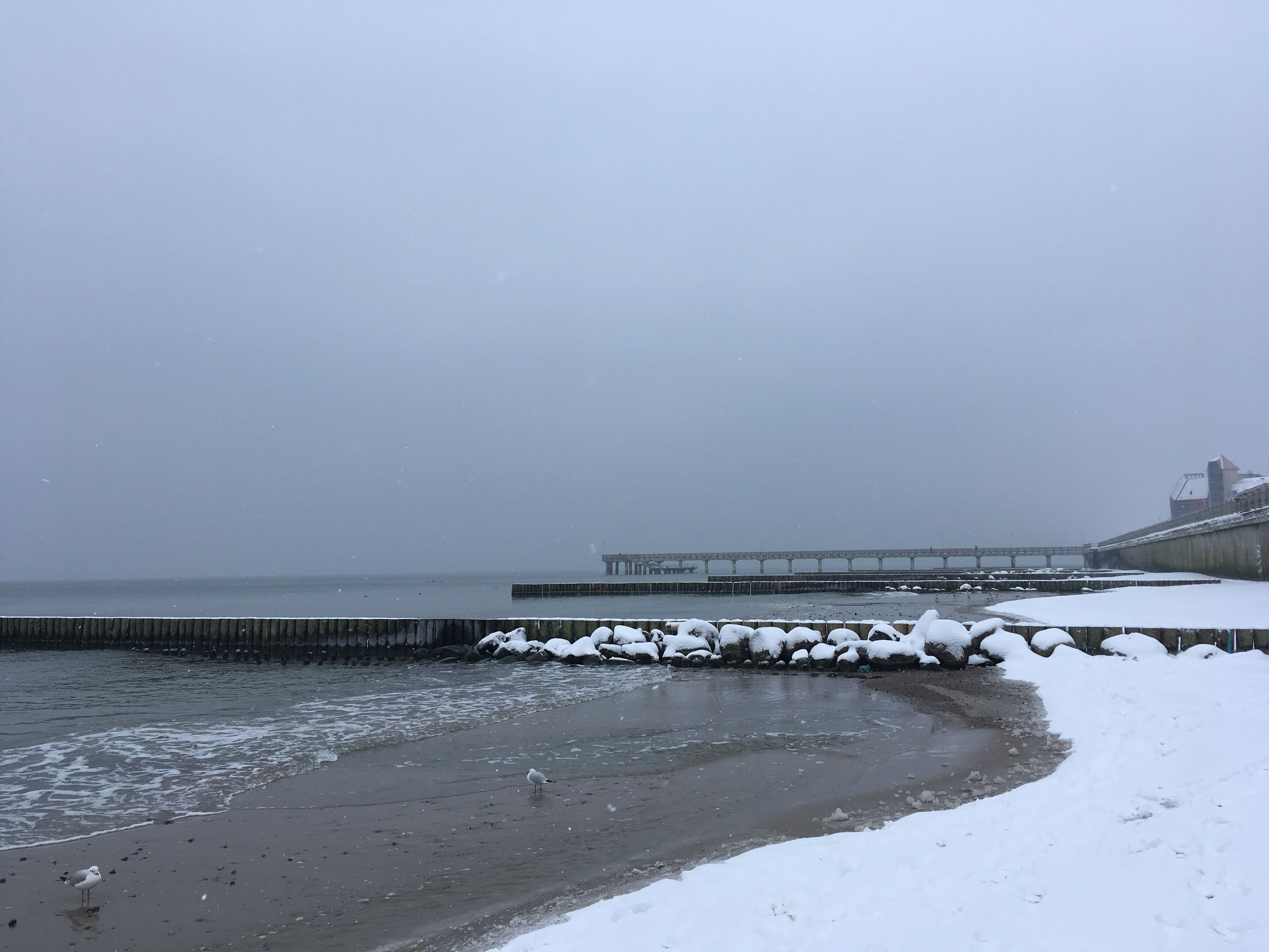 Вид с берега на пирс. Балтийское море. Фото: Vladimir Shveda