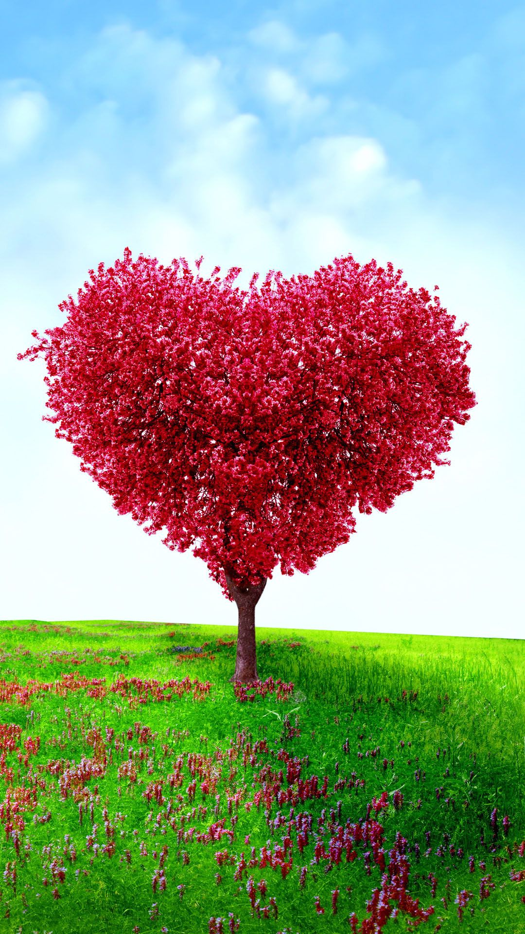 Heart Shaped Tree Valentines Day Love android wallpaper HD