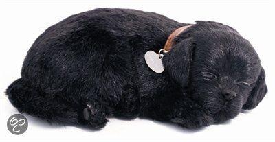 Perfect Petzzz Soft Labrador Zwart Black Labrador Labrador
