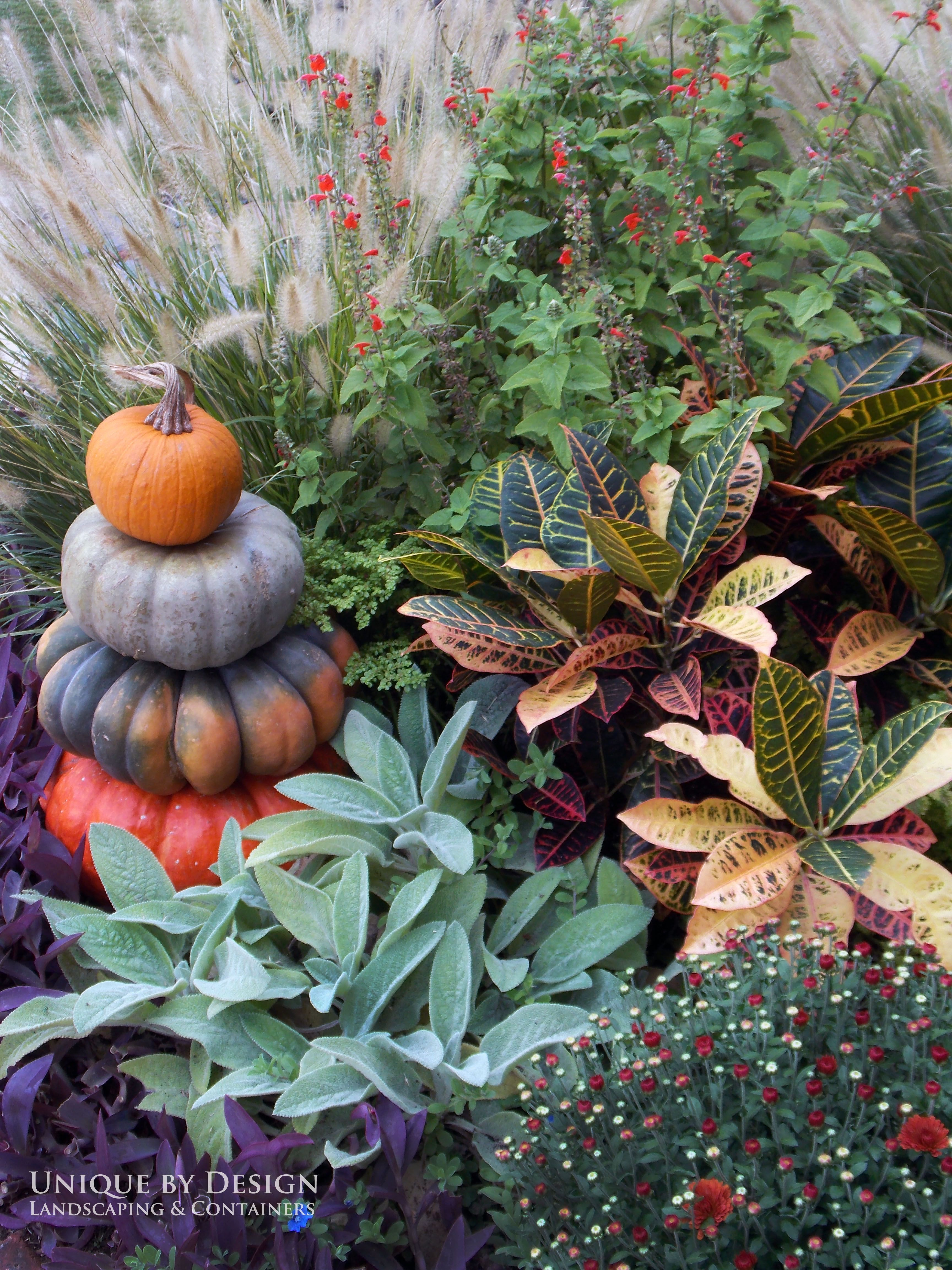 Unique by Design l H. Weis Fall landscaping, Autumn