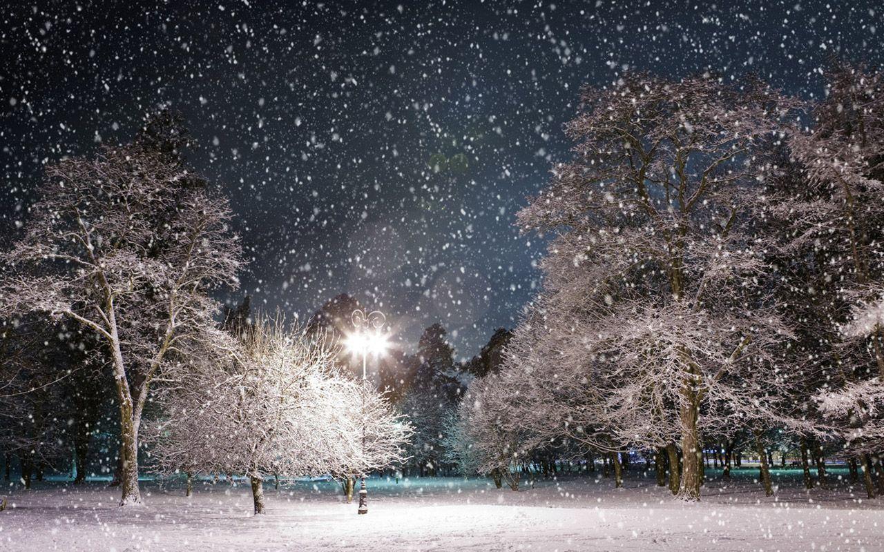 Winter Wonderland Background Free