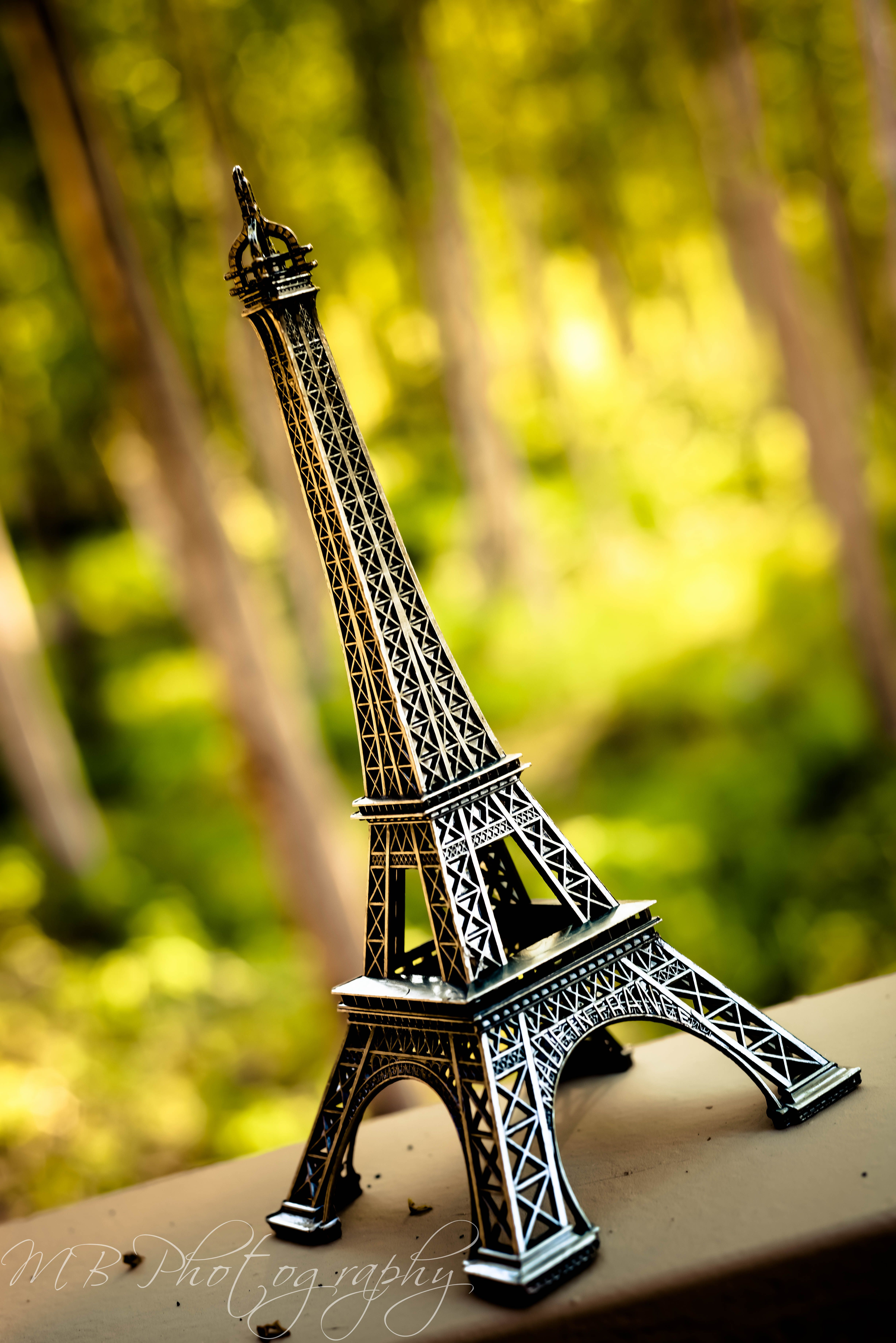 Eiffel Tower...yes I bought one of these at The Eiffel Tower from ...