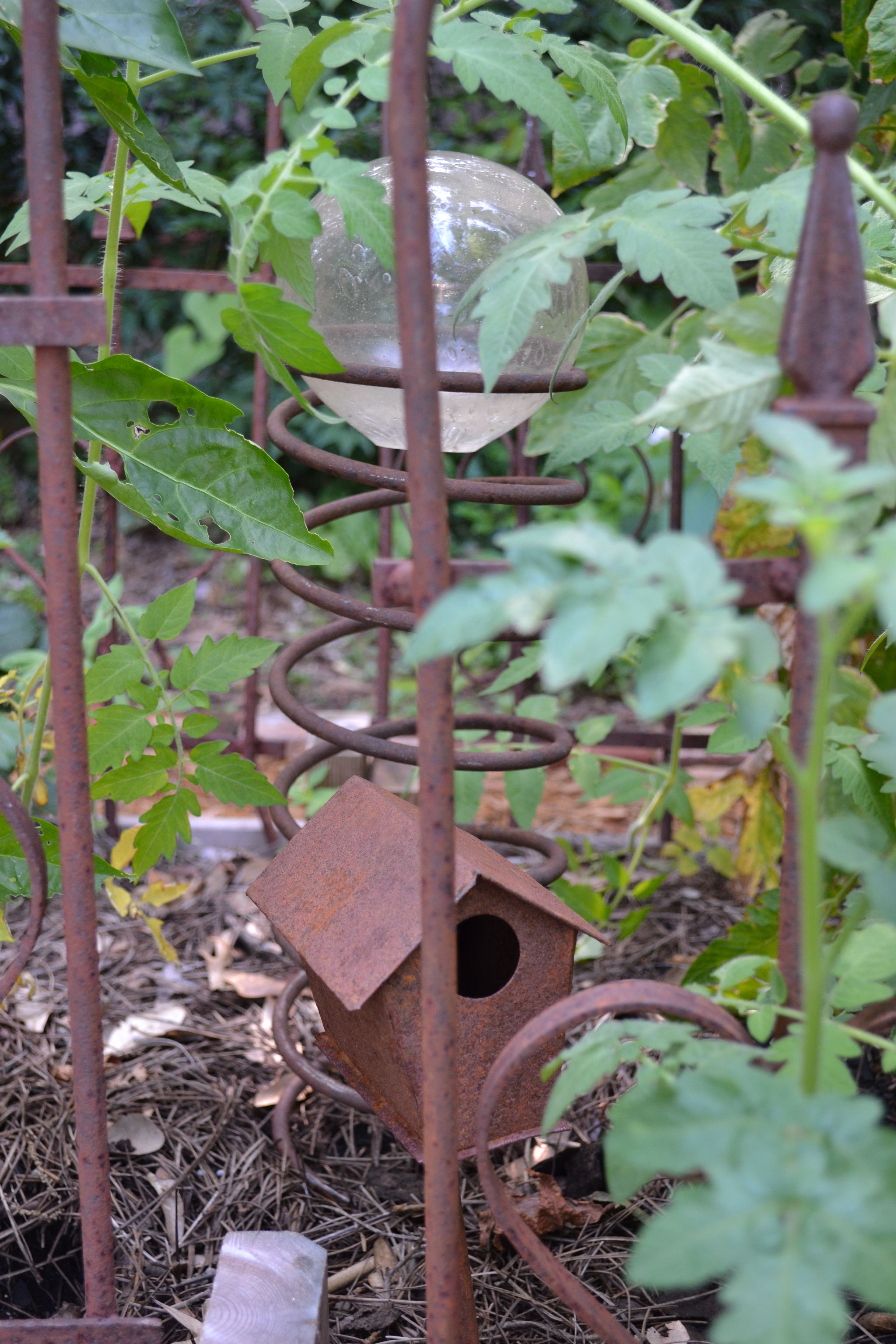 Repurposed an old rusty car spring into garden art | My own garden ...
