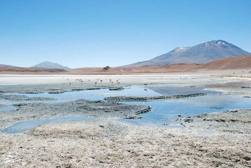 Salar de Uyuni - Bolivia 2008  www.stefanoaliquo.net