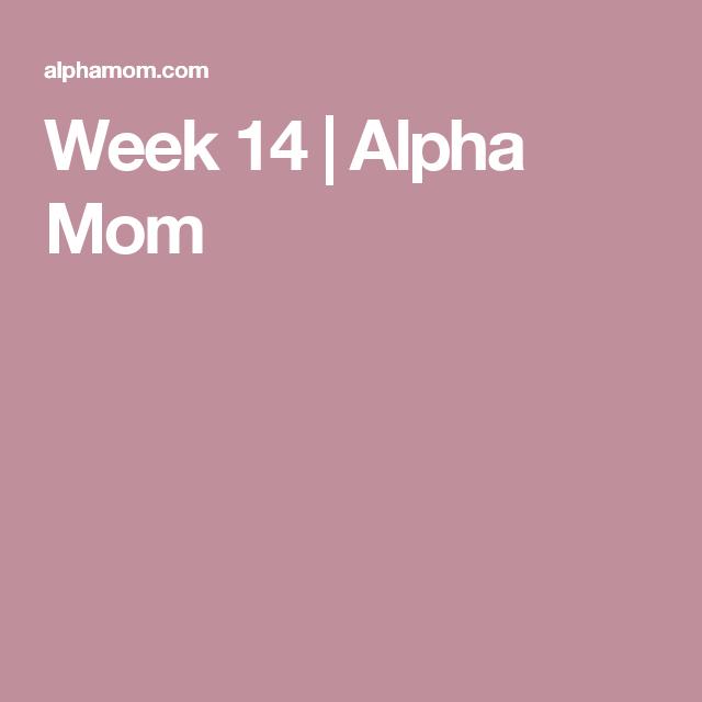 week by week pregnancy calendar week 14 alpha mom