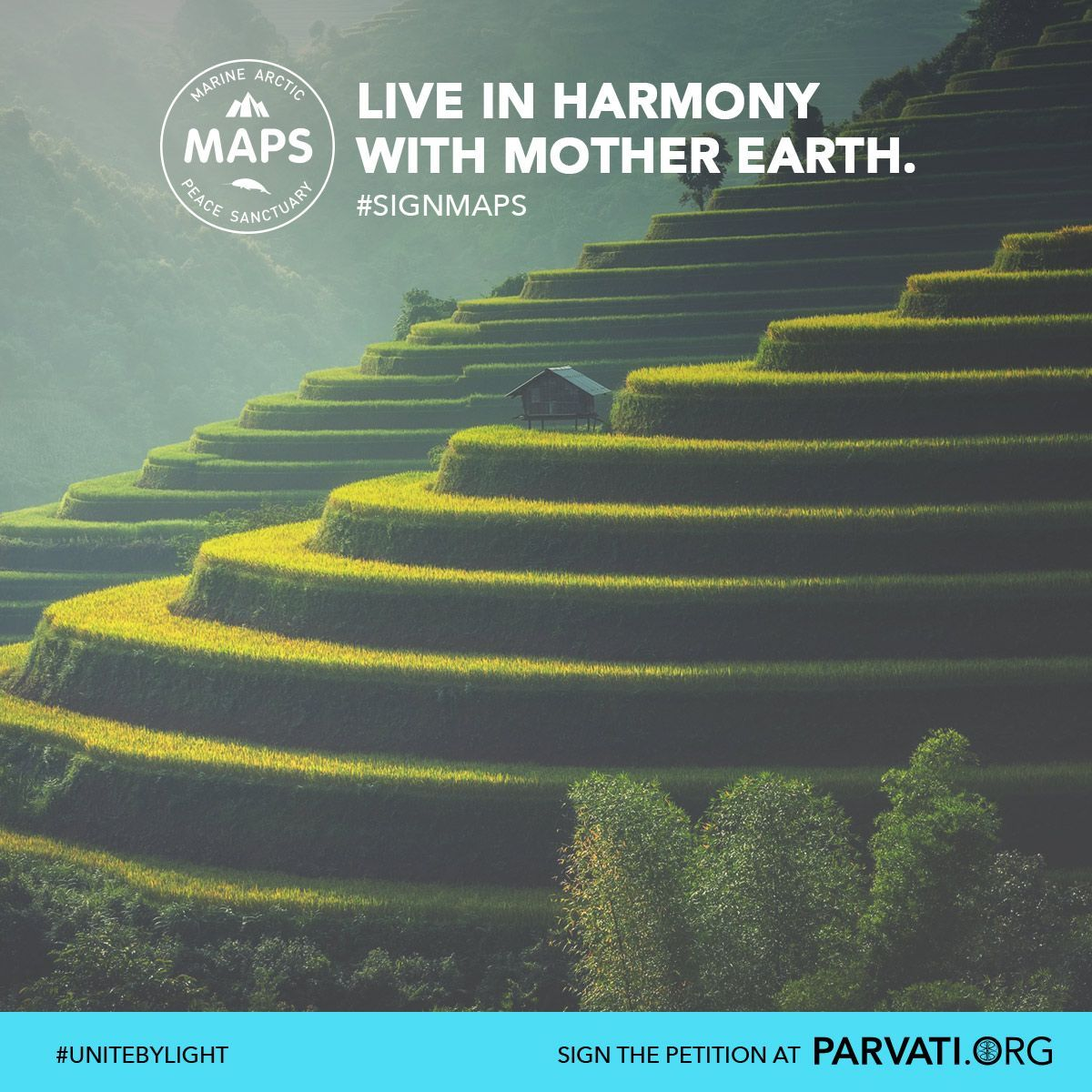When we attend to Nature with care, love and respect, we all co-exist harmoniously. We have reached a tipping point where our earth, and our wellbeing, is in a critical state. Sign and share the MAPS: Marine Arctic Peace Sanctuary petition at Parvati.org to protect our planet.