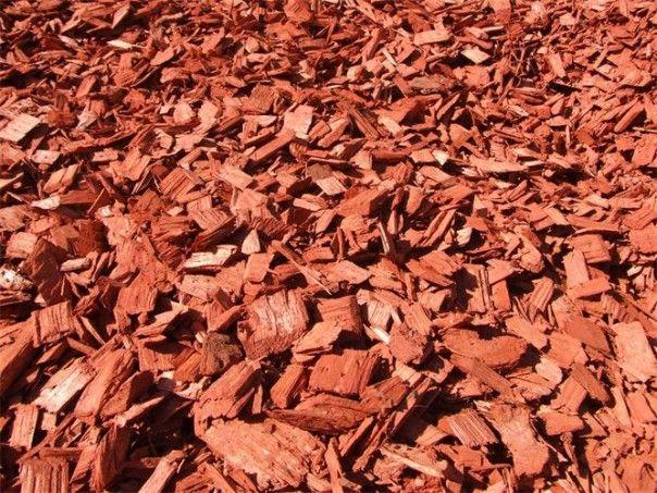 Red Cedar Chips Nugget Mulch For The Flower Beds Cedar Chips