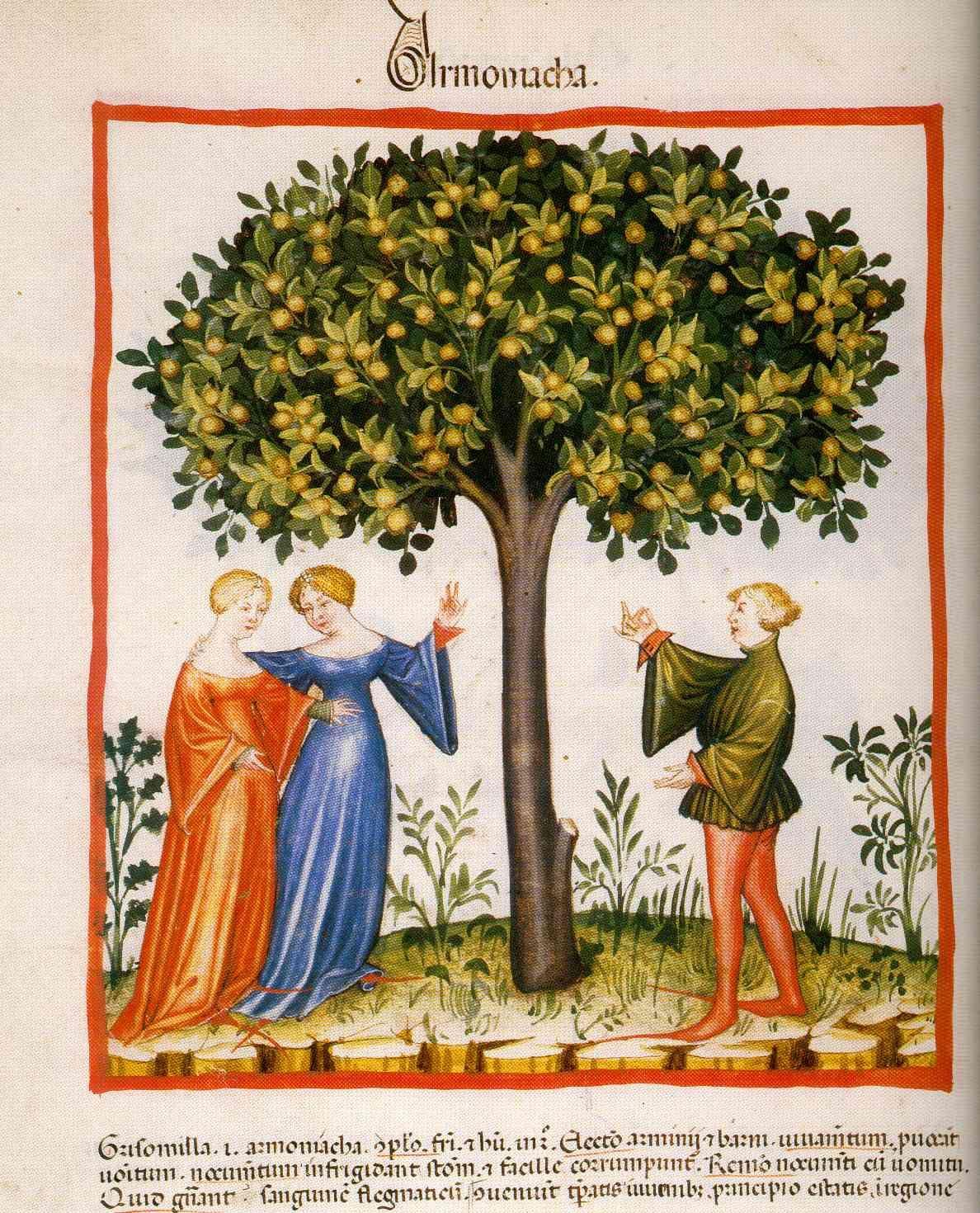 A Covilheira: GUARDA-CÓS FEMININO Tacuina sanitatis (XIV secolo)