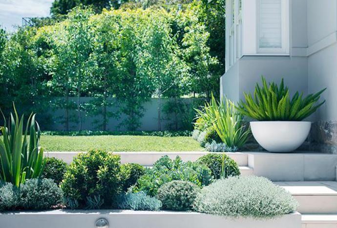 Front yard landscaping ideas for Australian homes | Sloped ... on Coastal Backyard Ideas id=20960
