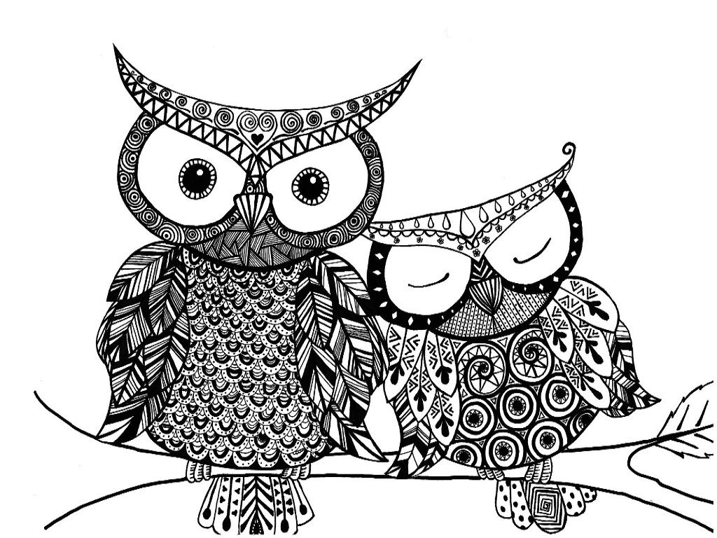 Owl Color Page | Moms birthday | Pinterest | Owl, Adult coloring and ...