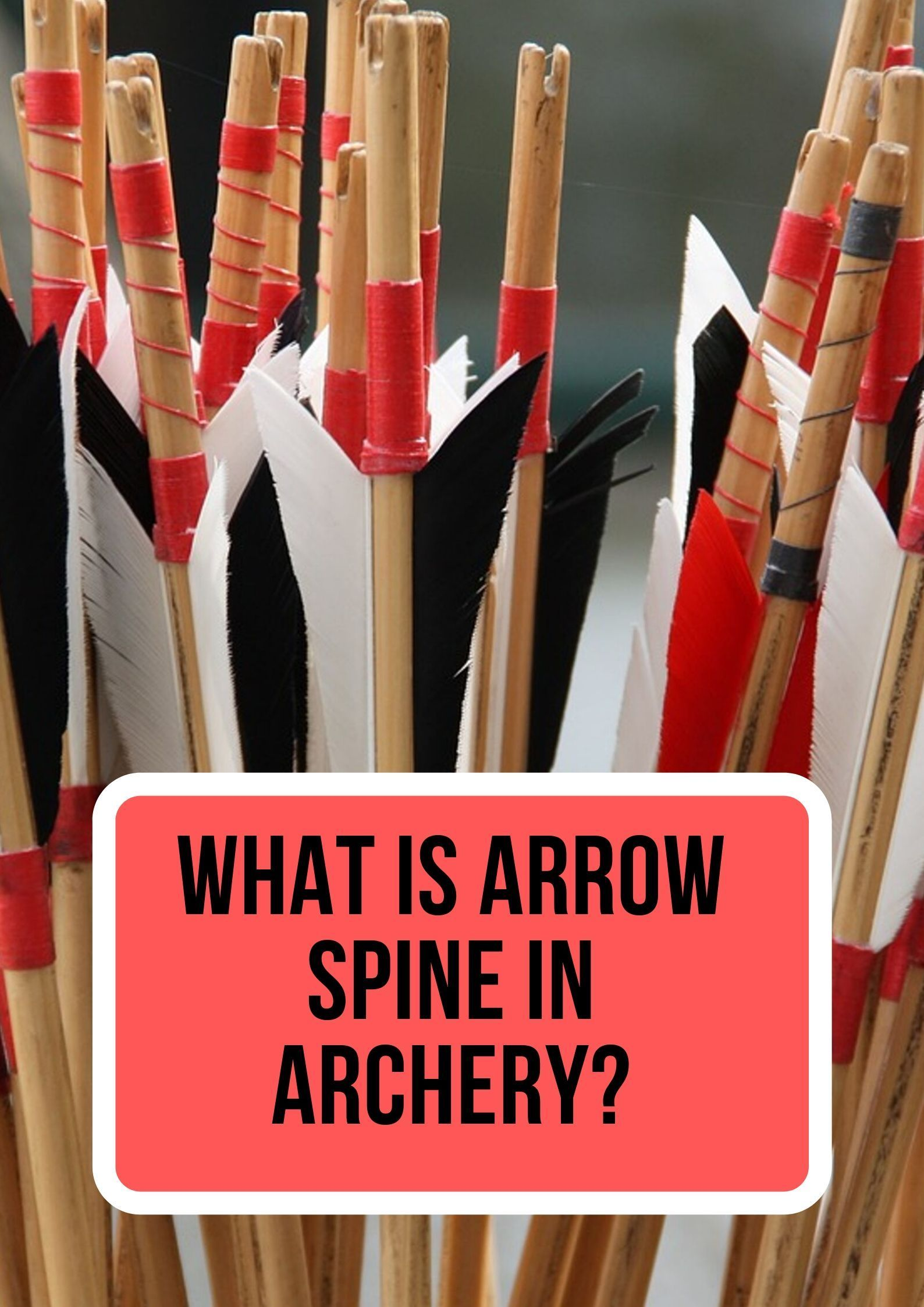 What is a Bow Square & Why You Need One? Archery, Spines