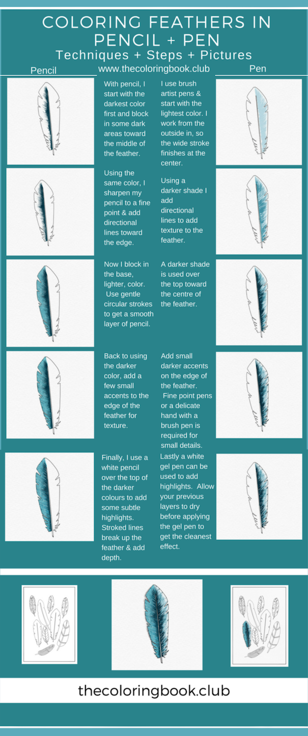 Want a cheat sheet for coloring feathers? thecoloringbook.club have ...