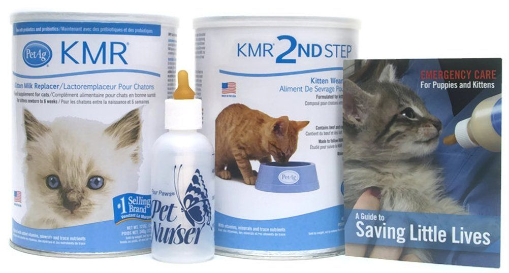 Kmr Kitten Milk Replacer Powder For Kittens And Cats 12oz Bundle With Four Paws Kitten Nursing Bottle 2oz With Petag Kmr 2 Milk For Cats Pet Mom Kitten Formula