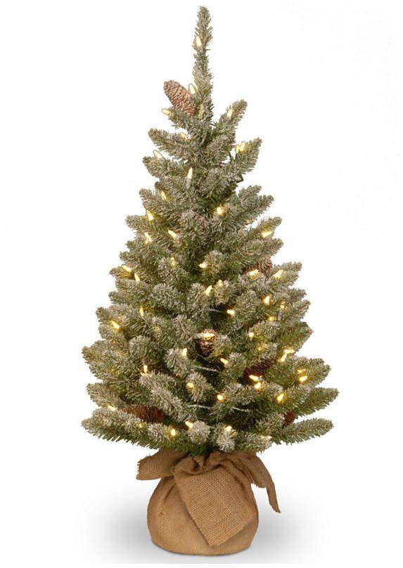 National Tree Company National Tree 3\u0027 Snowy Concolor Fir Small Tree