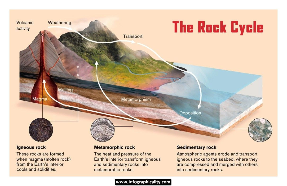 Geology infographic 20rock20cycle20infographicality the rock cycle is a principal thought in geography that depicts the dynamic transitions through geologic time near the several prevailing shake sorts pooptronica Images