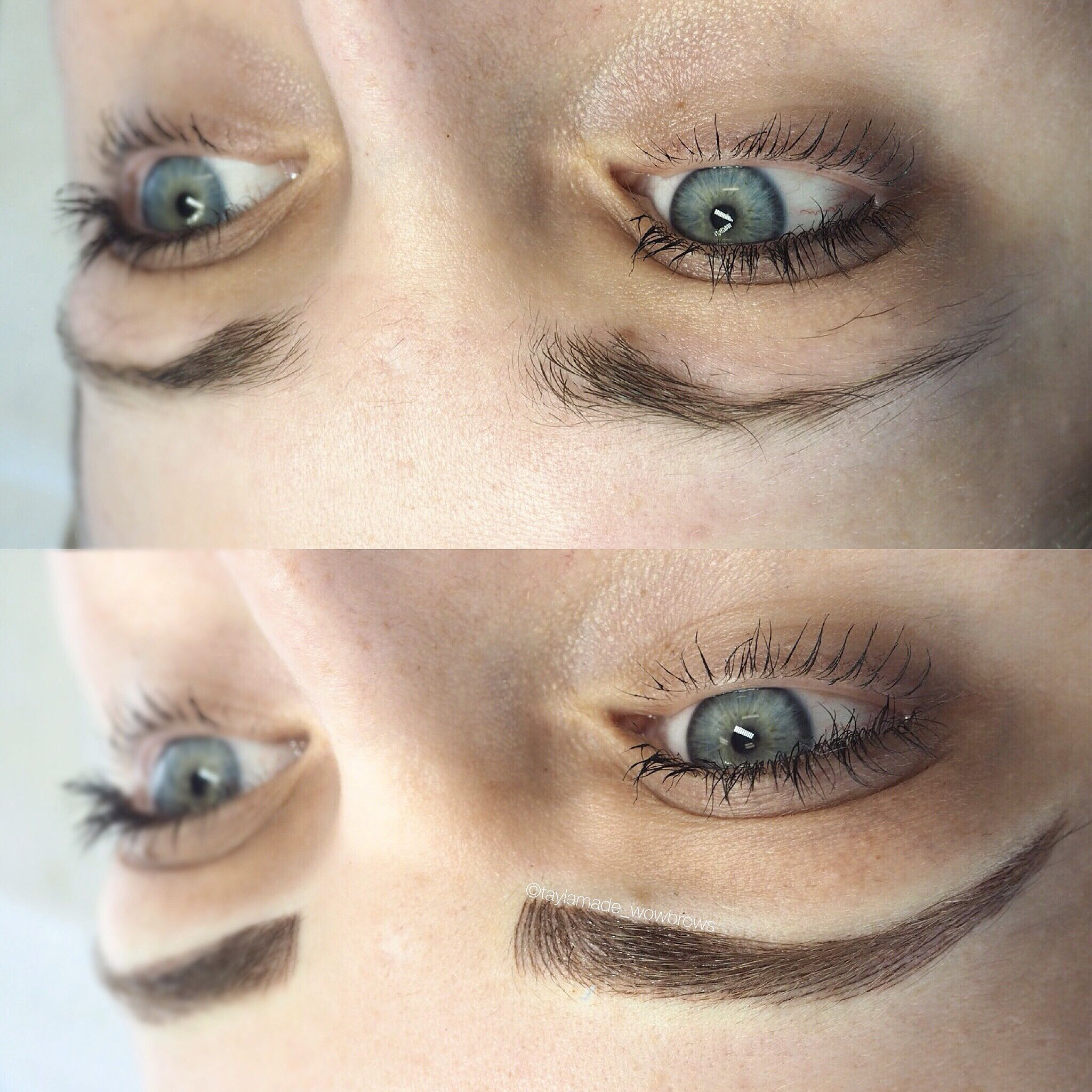 Eyebrow Tattoo Hair Stroke Feather Cmh Tayla Made Wow Brows