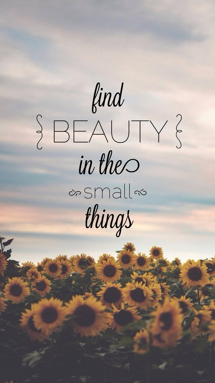 Find Beauty In The Small Things Galaxy S3 Wallpaper (720x1280)