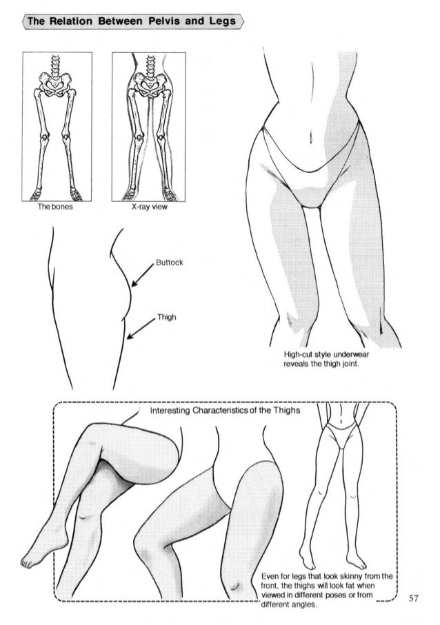 Drawing the female legs | Cuerpo humano (Guias) | Pinterest ...