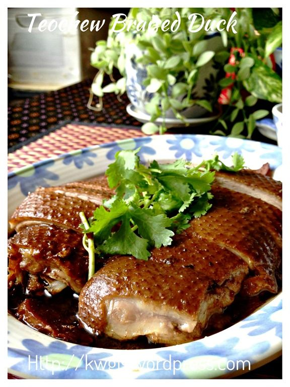 Teochew braised duck or lor ark braised duck food and chinese food teochew braised duck or lor ark forumfinder