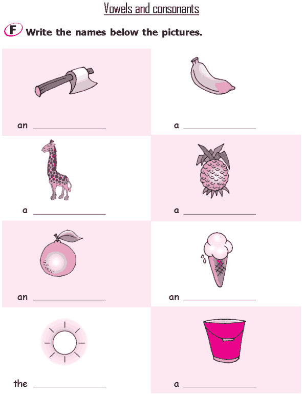 Worksheets Lesson For Grade 2 grade 2 grammar lesson 7 nouns masculine and feminine the alphabet vowels consonants