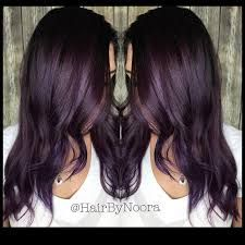 Image Result For Deep Violet Chocolate Brown Hair Color Hair And