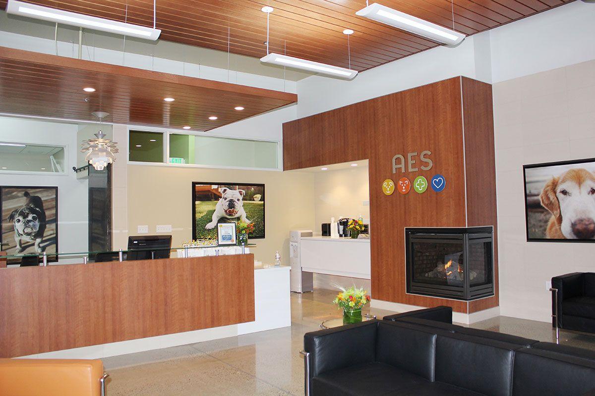 Animal Hospital Waiting Room Hospital Interior Design Hospital