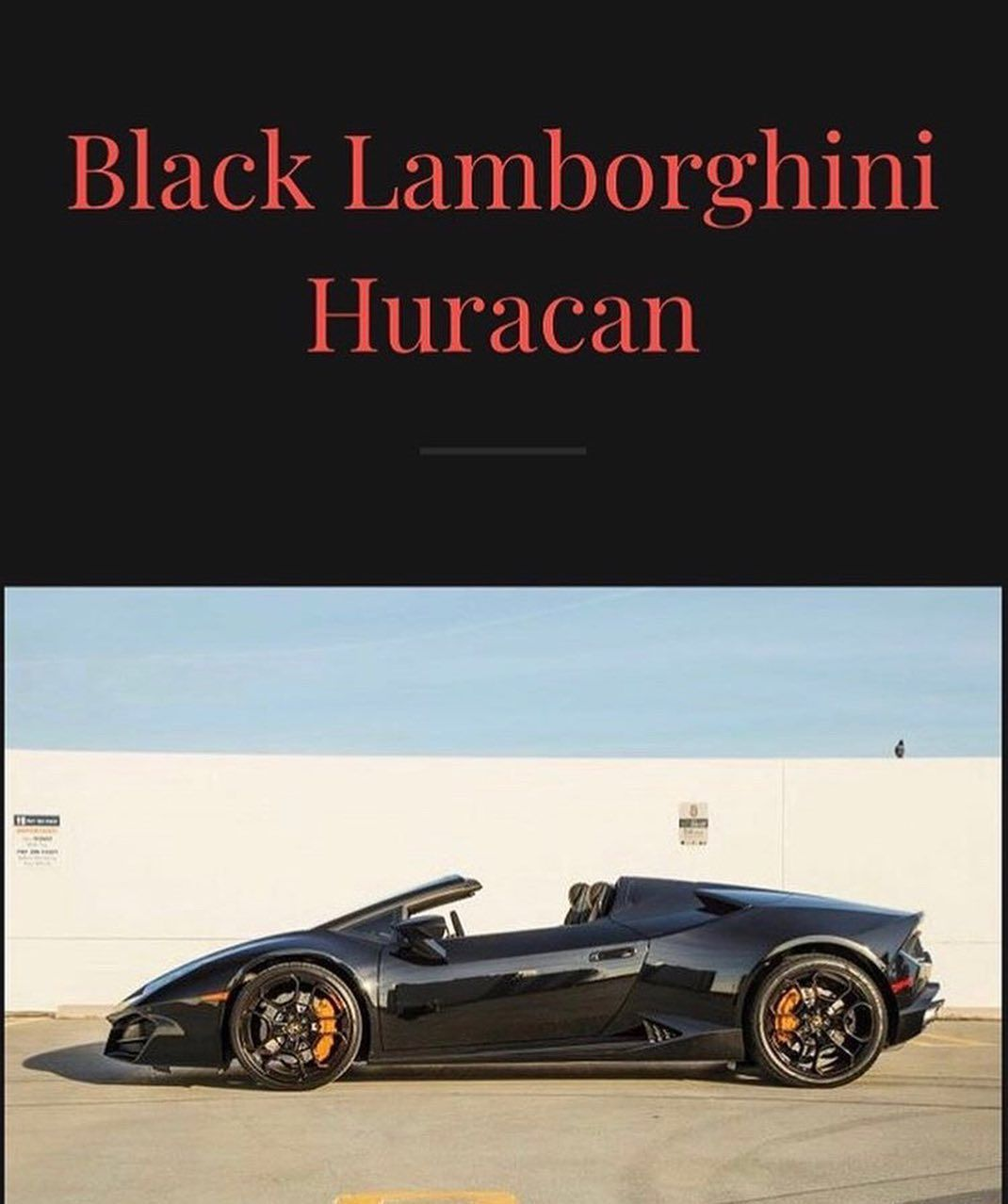 New Car Just Came In 2019 Lamborghini Hurucan 1300 00 A Day A Lot More Cars Coming In A Lot More To Rent Must Have A Valid Driver Licens Car Rental Luxury