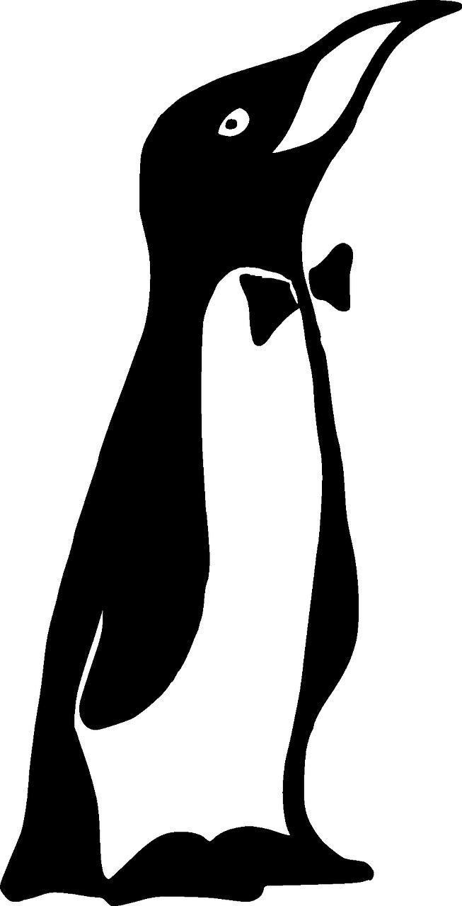 emperor penguin penguin bow tie transparent image emperor