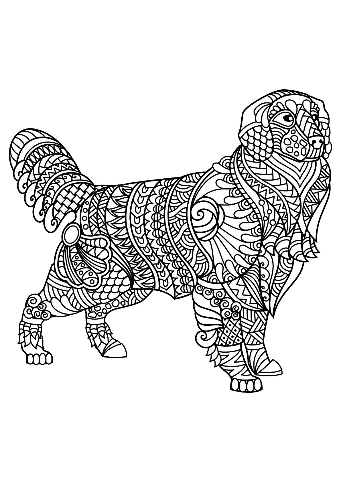 - HIDDEN - Animals Coloring Pages For Adults - Just Color (With