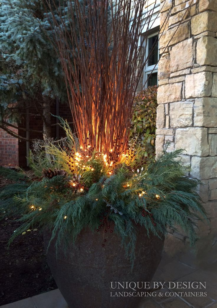 Outdoor winter holiday container. Green boughs, twinkle lights. #wintergardening