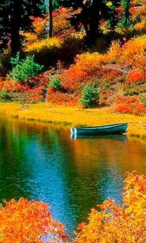 Wow the beautiful fall colors and reflection in the lake is awesome. I would love to canoe it.