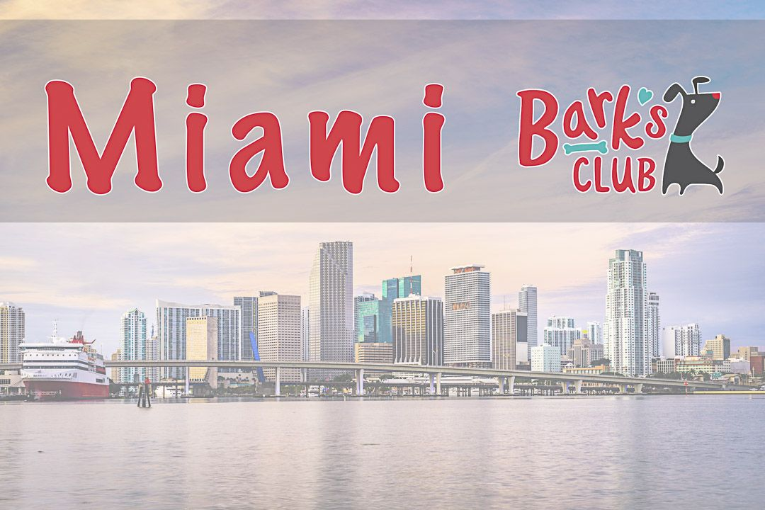 Miami Dog Boarding, Sitting and Dog Hotel. Offering the