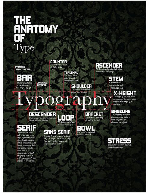 The Anatomy of Type ~ Fantastic poster explaining (beautifully) the elements of type in any font.