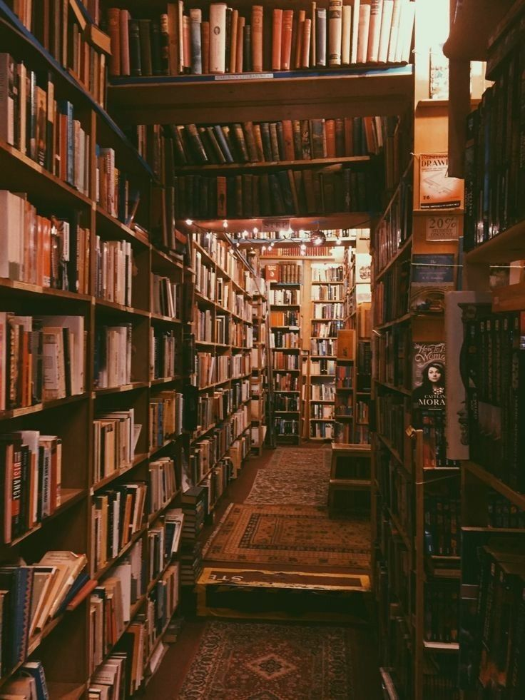 Old Bookstores Book Aesthetic Home Libraries World Of Books
