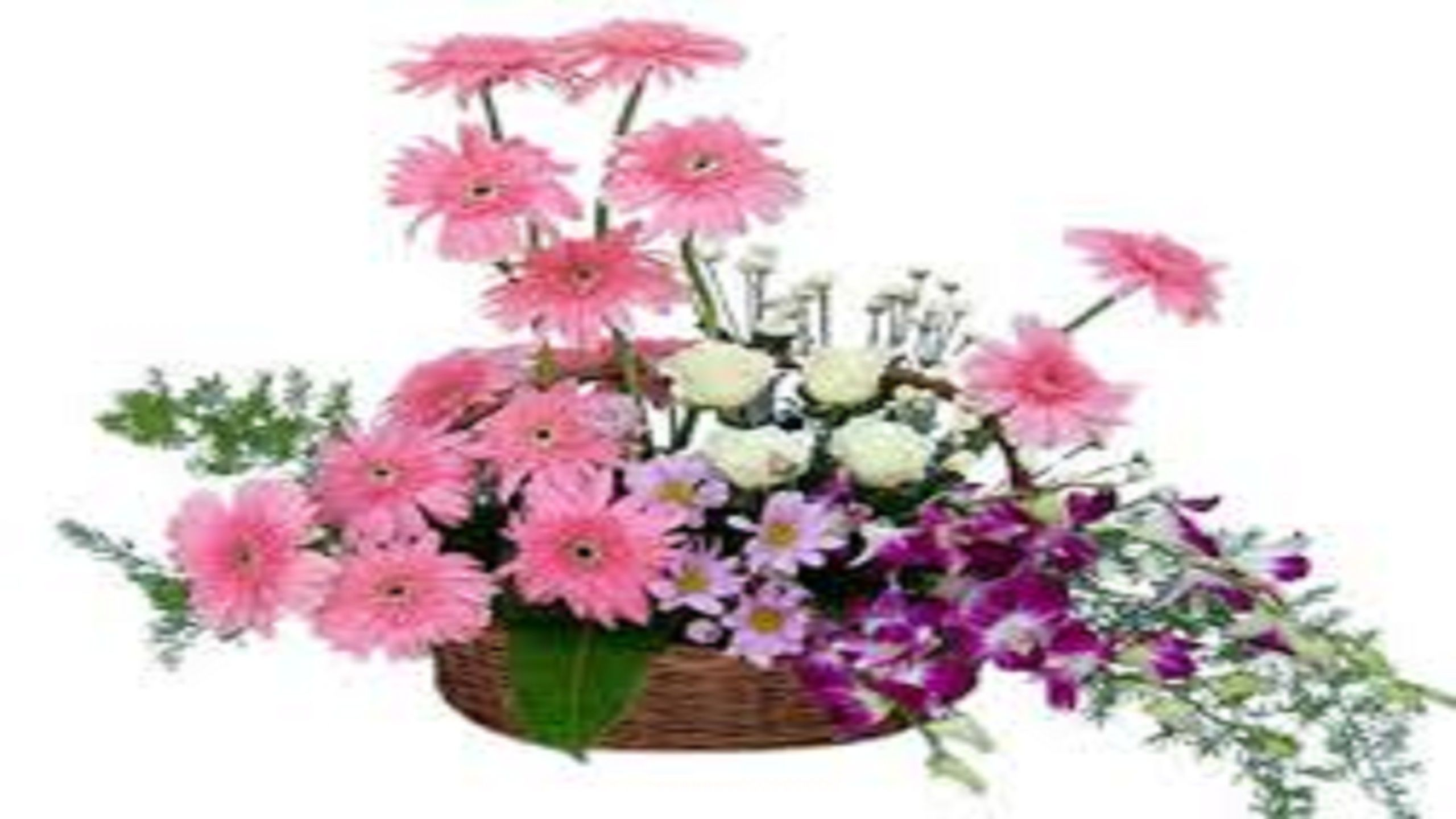 Send flowers to ahmedabad in order to celebrate your special send flowers to india send flowers to india from uk send flowers to izmirmasajfo Gallery