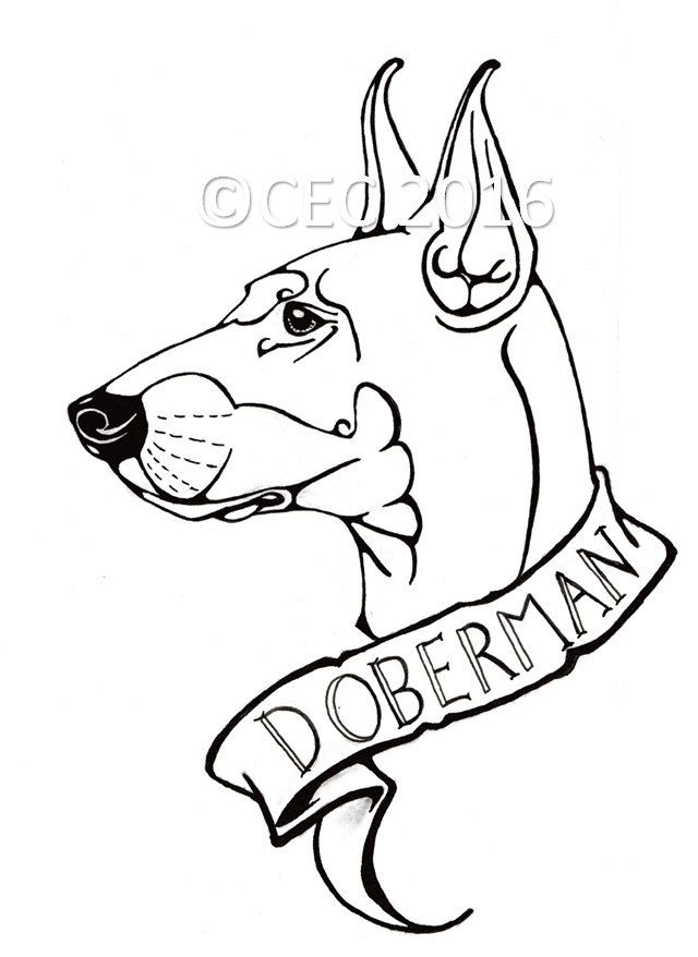 Colouring Page for All - Tattoo Flash Style Doberman Dog Design ...