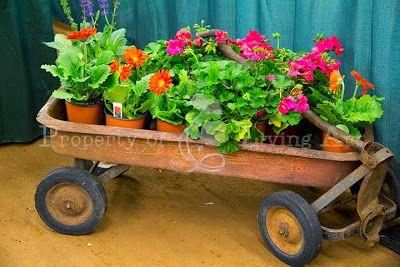 9532118fe6a5aaebaa2452bbfca475ba - Collin County Master Gardeners Garden Show