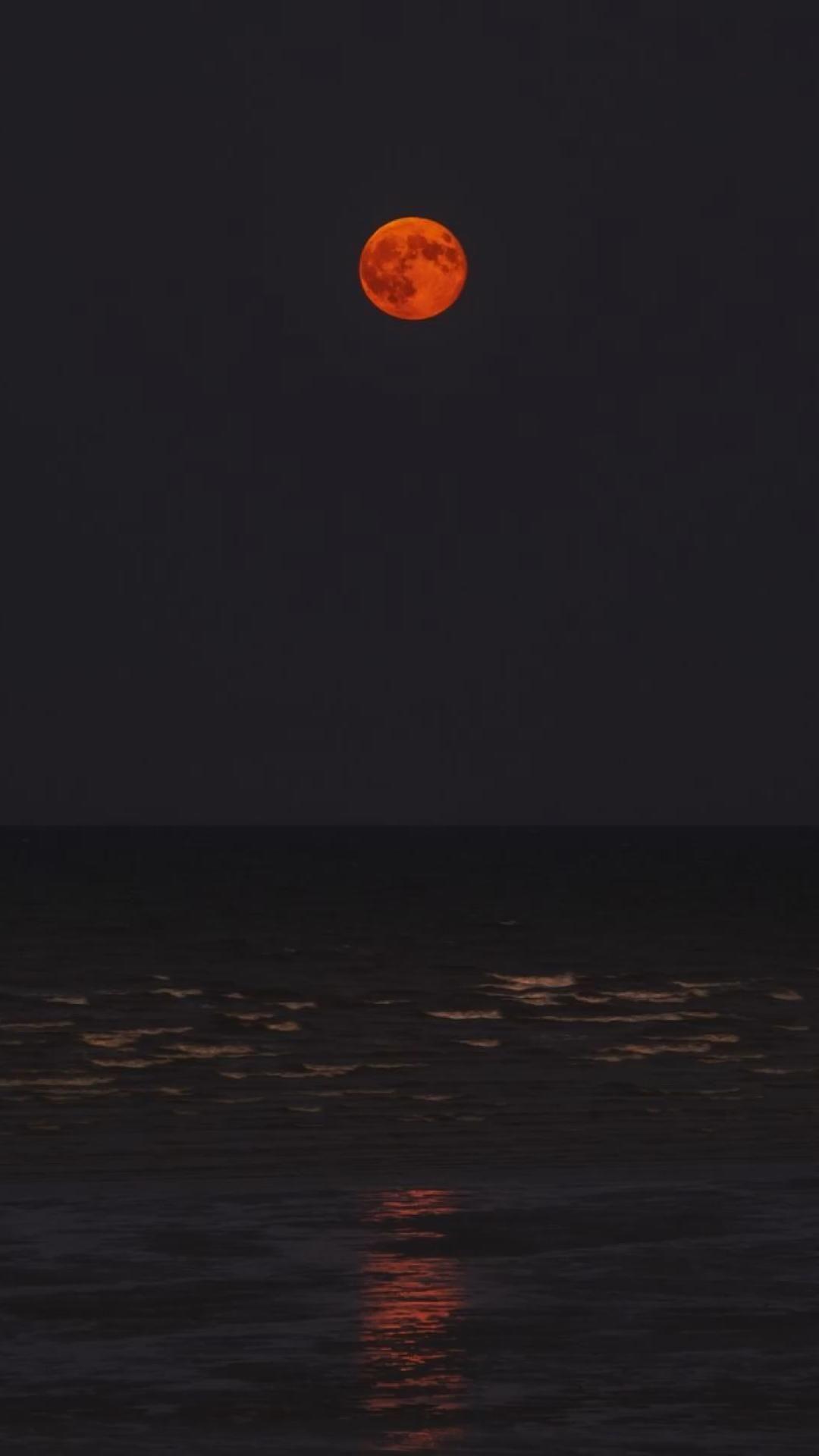 Moon   Moonlight   Night   Beach   Summer Feelings  Dark   Red Moon   Wallpaper